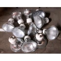 Halogeen lampjes GU10 230 volt 50 Watt 51 mm