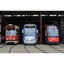 Trams & Bussen